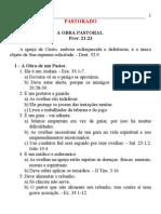 29_20pastorado