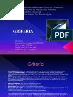 Griferia (2)
