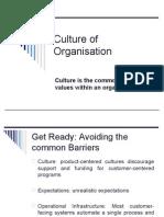 Culture of Organisation