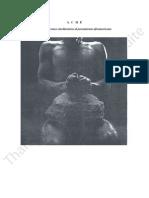 Aché. Aproximaciones etnoliterarias al pensamiento afroamericano Copy.pdf