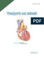 """Relatório sobre o """" transporte nos animais"""" (coração)"""