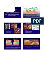 1 FP2 FPD Lecture 2011pdf