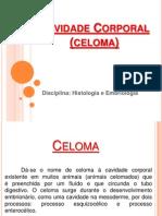 Cavidade Corporal (Celoma)