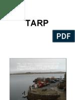 TARP Bailout