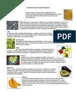 Cultivos de Santa Cruz Verapaz