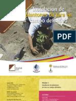 Modulo 2 - Instalacion de Plantones de Tara en Campo Definitivo