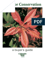 Tree BuyersGuide