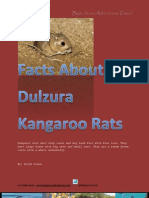 Facts About Dulzura Kangaroo Rats