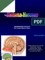 TE e Meninges[1] Anatomia