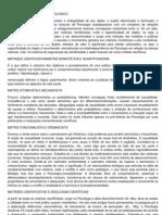 matrizes CAPÍTULO II