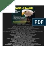 AS 20 ATITUDES DA ÁGUIA E A FILOSOFIA DO SUCESSO.pdf