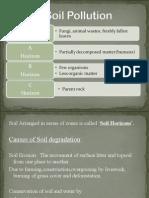 Soil Pollution 1