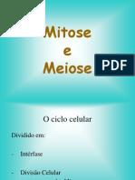 mitose_meiose