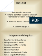Tapon Hemostatico Solo Informacion