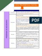 Cualificacion_profesionalconducta