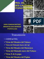 Fitopatología-Virus-UNSA2010-2