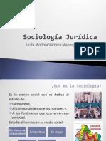 Concepto de Sociologia
