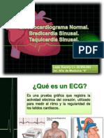 Diapo Expo ECG ENERO 2013