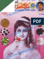 Andariki Ayurvedam May2010 by TEB