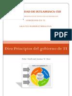 Diez Principios Del Gobierno de TI