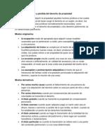 Adquisición y pérdida del derecho de propiedad - DERECHO CIVIL III