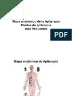 Mapa Anatomico de La Apiterapia