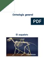 Modulo 1 - Osteoartro general.pdf