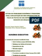 APRESENTAÇÃO ESTUDO DE VIABILIDADE ECONOMICA E FINANCEIRA para os alunos da FAZAG