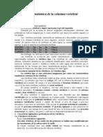 Modulo 1 - Organización anatómica de la columna vertebral