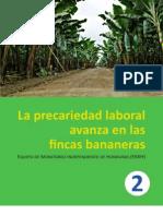 La Precariedad Laboral Avanza en Las Fincas Bananeras