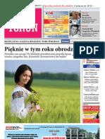 Poza Torun nr 6 .pdf