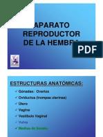 Reproductor Generalidades y Perra[1]