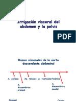 Irrigacion Visceral Del Abdomen y La Pelvis