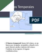 Huesos Temporales