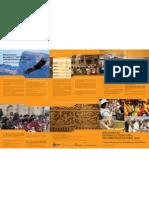 Diplomado en Desarrollo Territorial Con Identidad Cultura