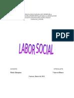 Labor Social Trabajo Final