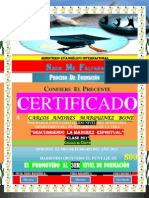 (Carlos a) Certificado de Promocion (2do Nivel)