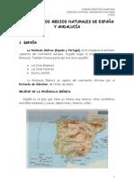 u 6 Los Medios Naturales de EspaÑa y AndalucÍa