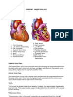 ANATOMY and Physiology Case Pre