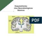 2. Esquizofrenia Aspectos Neurobiolgicos Bsicos