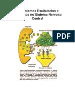 3. Mecanismos Excitatrios e Inibitrios No Sistema Nervoso Central
