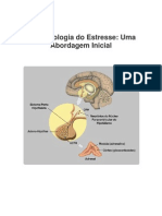 4. Neurobiologia Do Estresse