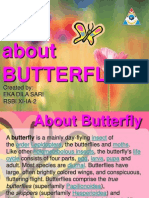 About Butterfly