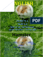 About Hamster