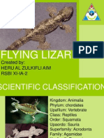 About Flying Lizard