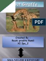 About Giraffe