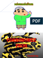 About Corroboree Frog