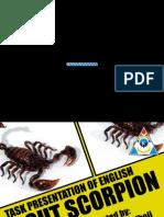 About Scorpion