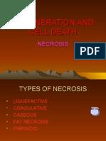 Necrosis and Gangrene