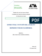 Tabata Mendoza Aparato Reproductor en Mamiferos